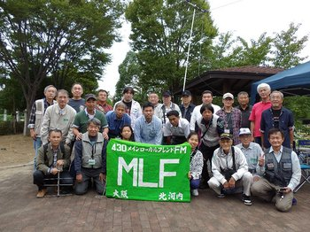 MLF2.JPG